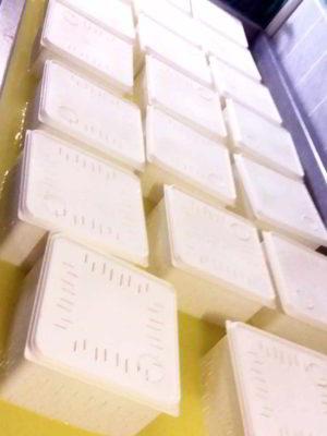 pelechras-making-cheese-5